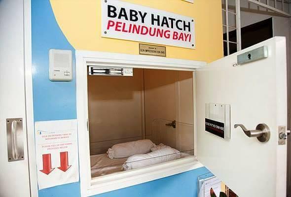 baby hatch