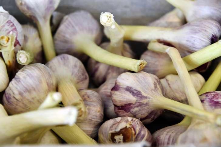 6 kesalahan ketika amal petua bawang putih