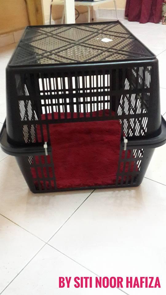 Mudahnya DIY Rumah Kucing Dari Bakul, Tak Sampai Pun RM10