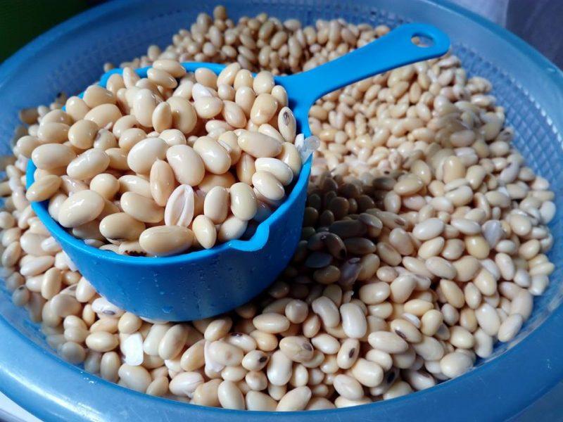 Tauhu Homemade Guna Cuka, Ada Sebab Kenapa Rendam 1 Kilo Kacang Soya Lebih Berbaloi