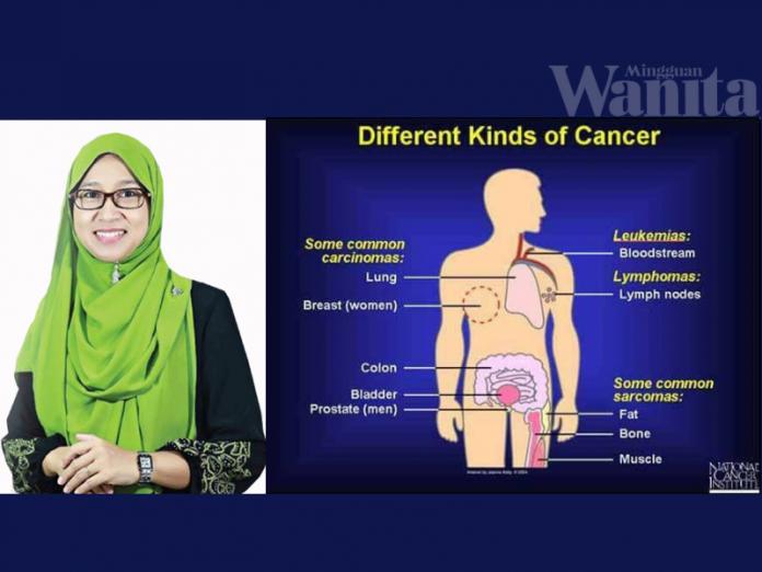 sel kanser